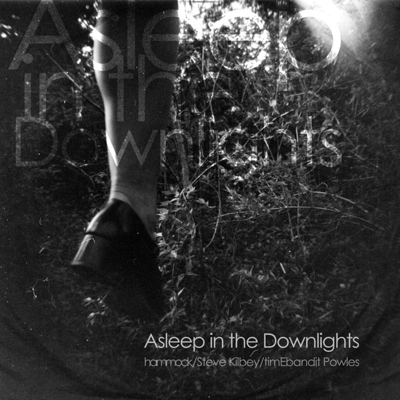hammock.steve kilbey & timEbandit powles / asleep in the downlights